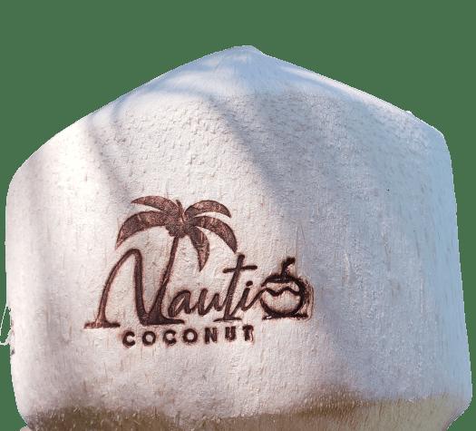 Customized Nauti Coconut